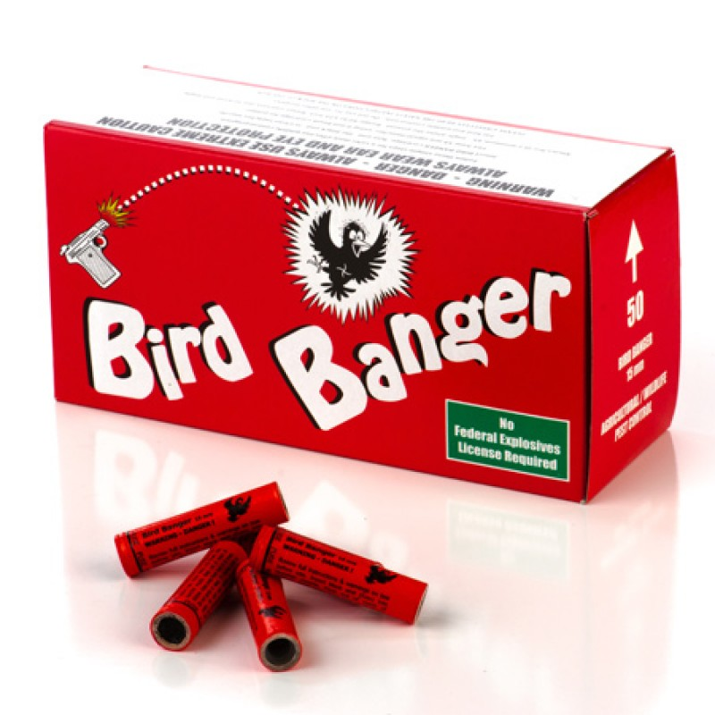 Bird Banger with Blank Primers